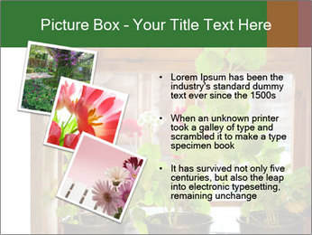 Geranium flowers PowerPoint Template - Slide 17