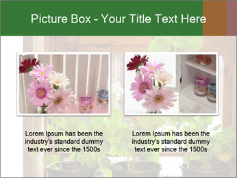Geranium flowers PowerPoint Template - Slide 18