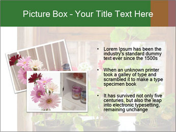 Geranium flowers PowerPoint Template - Slide 20