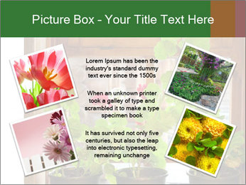 Geranium flowers PowerPoint Template - Slide 24