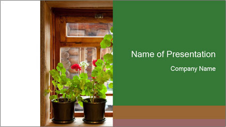Geranium flowers PowerPoint Template