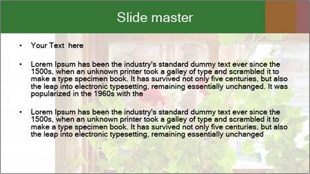 Geranium flowers PowerPoint Template - Slide 2