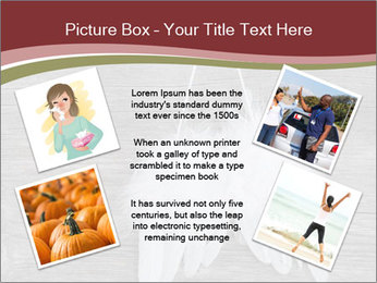 Decorative feathers PowerPoint Template - Slide 24