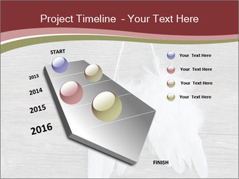 Decorative feathers PowerPoint Template - Slide 26