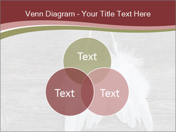 Decorative feathers PowerPoint Template - Slide 33