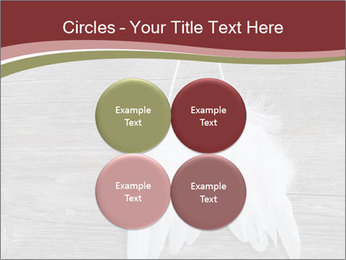 Decorative feathers PowerPoint Template - Slide 38