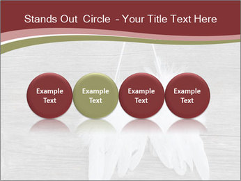 Decorative feathers PowerPoint Template - Slide 76