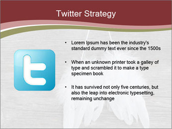 Decorative feathers PowerPoint Template - Slide 9