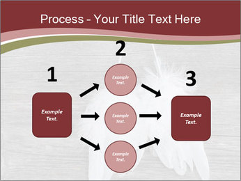 Decorative feathers PowerPoint Template - Slide 92