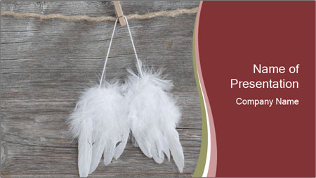 Decorative feathers PowerPoint Template