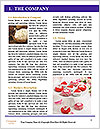 0000092347 Word Template - Page 3