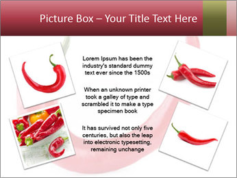 Red hot chili pepper PowerPoint Template - Slide 24