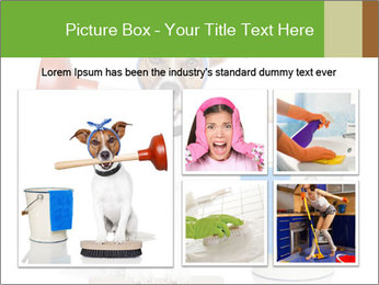Cleaning dog PowerPoint Template - Slide 19
