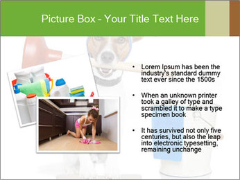 Cleaning dog PowerPoint Template - Slide 20