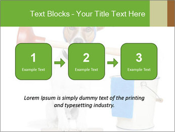 Cleaning dog PowerPoint Template - Slide 71