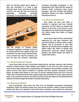 0000092375 Word Template - Page 4