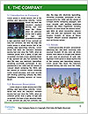 0000092381 Word Template - Page 3