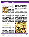 0000092385 Word Templates - Page 3