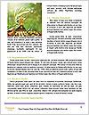 0000092385 Word Templates - Page 4