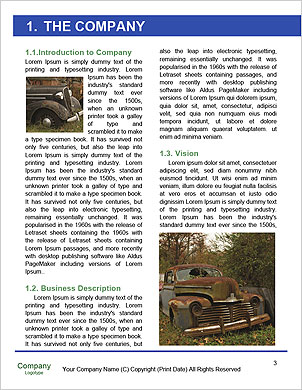 0000092386 Word Template - Page 3