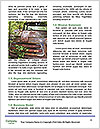 0000092386 Word Template - Page 4