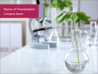 Green plants PowerPoint Template - Slide 1