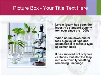 Green plants PowerPoint Template - Slide 13