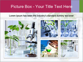 Green plants PowerPoint Template - Slide 19