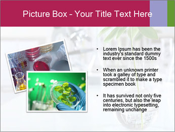 Green plants PowerPoint Template - Slide 20