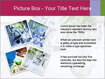 Green plants PowerPoint Template - Slide 23