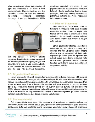 0000092395 Word Template - Page 4