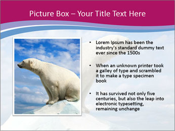 Polar bear PowerPoint Template - Slide 13
