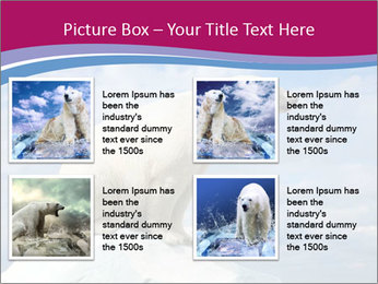 Polar bear PowerPoint Template - Slide 14