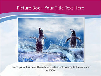 Polar bear PowerPoint Template - Slide 16