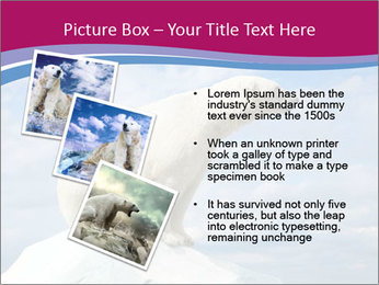 Polar bear PowerPoint Template - Slide 17