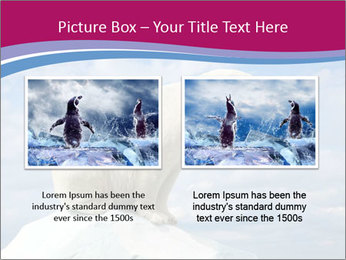 Polar bear PowerPoint Template - Slide 18