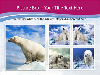 Polar bear PowerPoint Template - Slide 19