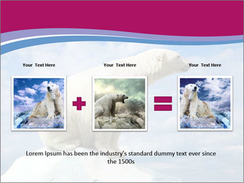 Polar bear PowerPoint Template - Slide 22