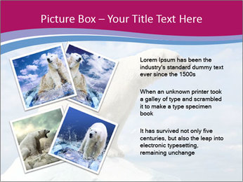 Polar bear PowerPoint Template - Slide 23