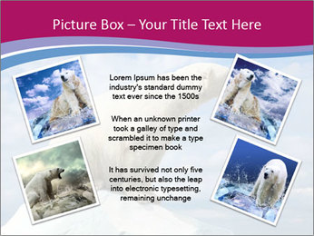 Polar bear PowerPoint Template - Slide 24