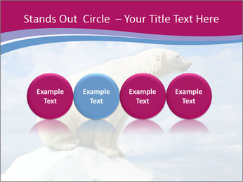Polar bear PowerPoint Template - Slide 76