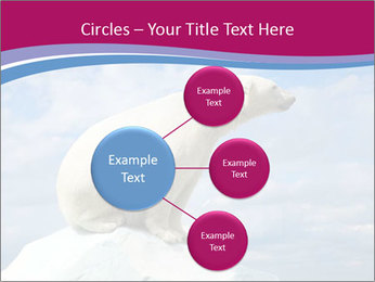 Polar bear PowerPoint Template - Slide 79