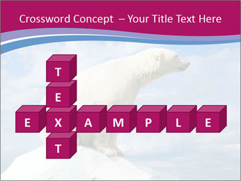 Polar bear PowerPoint Template - Slide 82