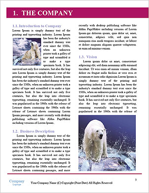 0000092408 Word Template - Page 3
