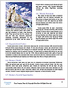 0000092408 Word Template - Page 4