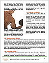 0000092409 Word Template - Page 4
