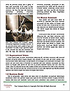 0000092411 Word Template - Page 4