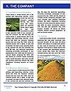0000092412 Word Template - Page 3