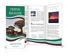 0000092415 Brochure Template
