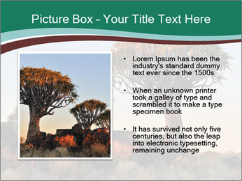 Sunrise at Forest PowerPoint Templates - Slide 13